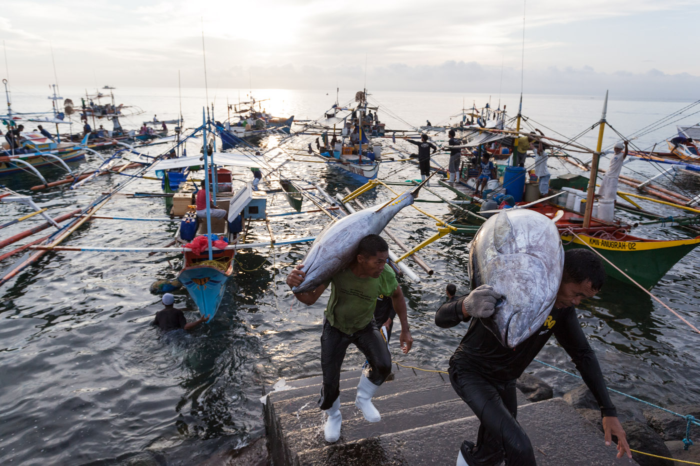 Tuna fishing in Mindan...